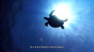 [Bodyboard Film - Amaury